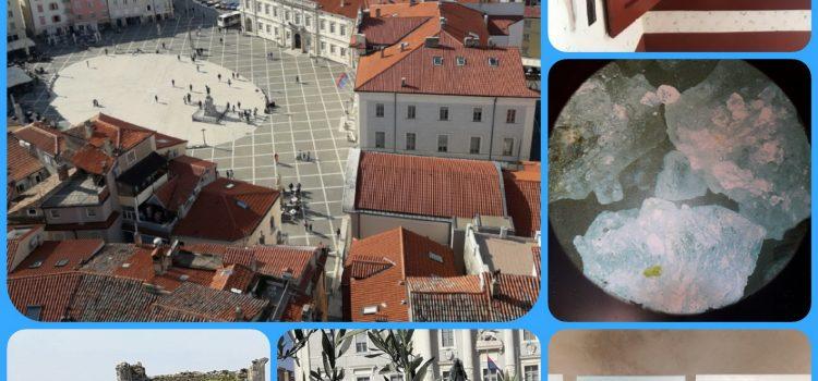 Nekaj  foto utrinkov iz Pirana