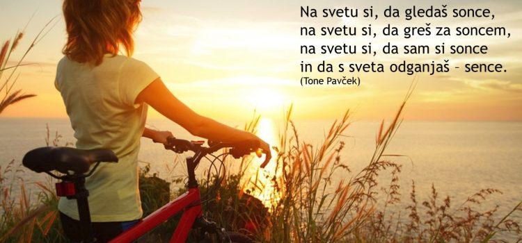 Skupščina DLB Slovenj Gradec