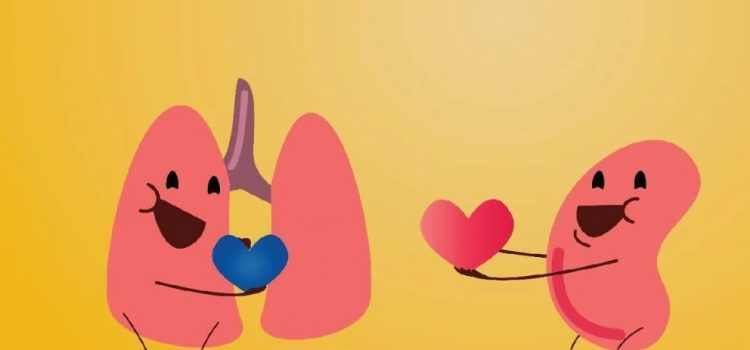 Evropski dan darovanja in presaditve organov 10.10.2020